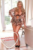 Picture 12 of Foxy Love, Paddington or Lancaster