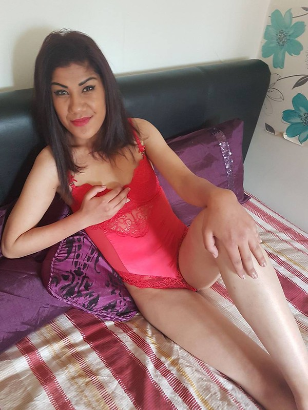 female escorts in sheffield area